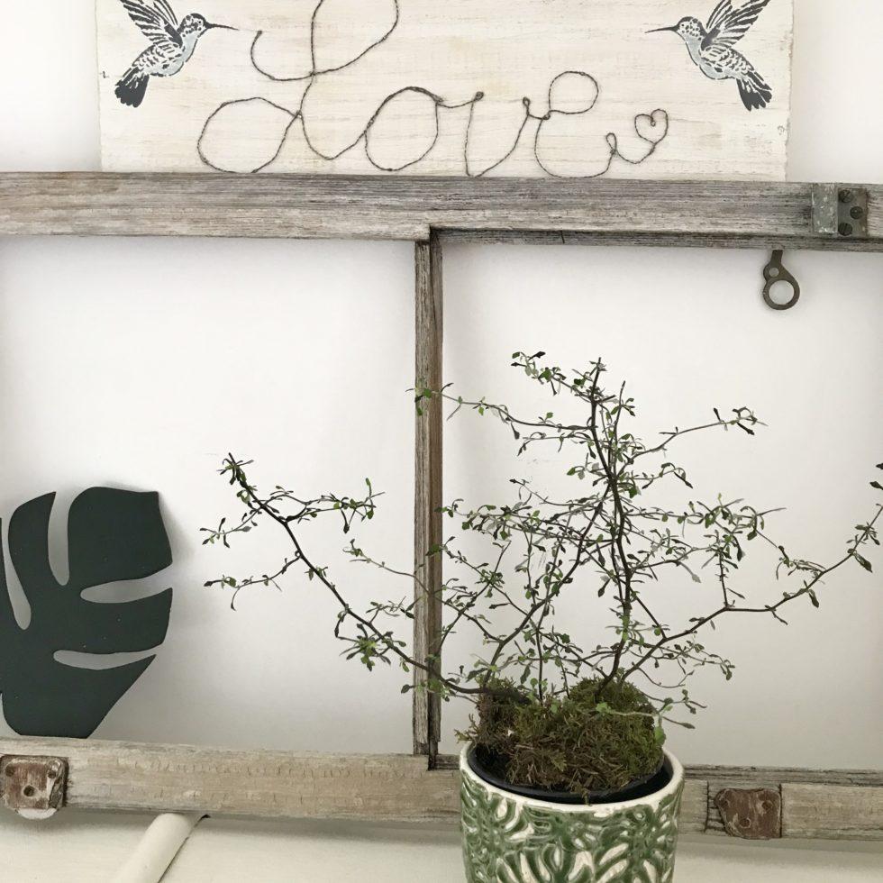 Chalet8, Blog, DIY, Holzschild, Draht, Schriftzug, Love, Kolibris
