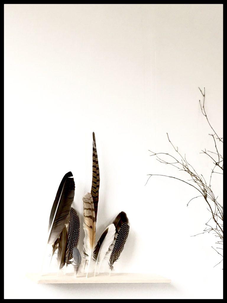 Schwebende Wanddekoration. Gefiederte-Wanddekoration: Bezaubernde Wanddeko selber machen. Basteln mit Naturmaterialien. DIY-Blog, #Chalet#8, #Federn, #GefiederteWanddekoration