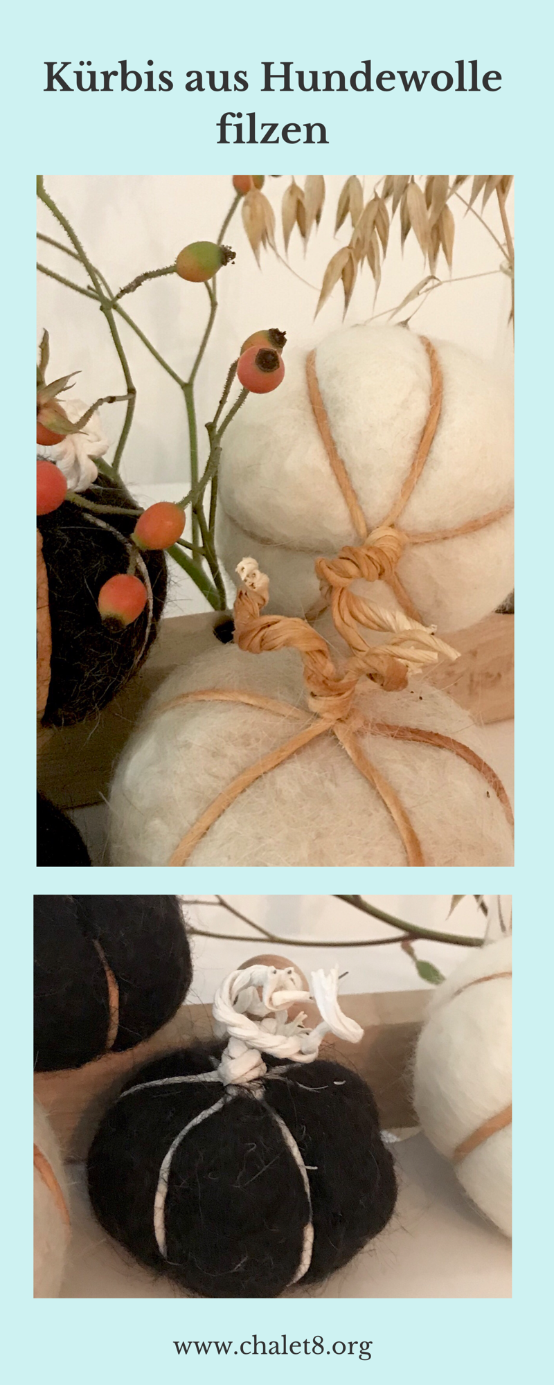 DIY: Kürbis filzen aus Hundewolle mit selbstgemachtem Spülimittel aus Alepposeife. Natürliche Herbst Deko selber machen. Prima Idee für Hunde. Upcycling von Hundehaaren. #Kürbis, #Herbst, #Chalet8, #Herbstdeko, #Filzen
