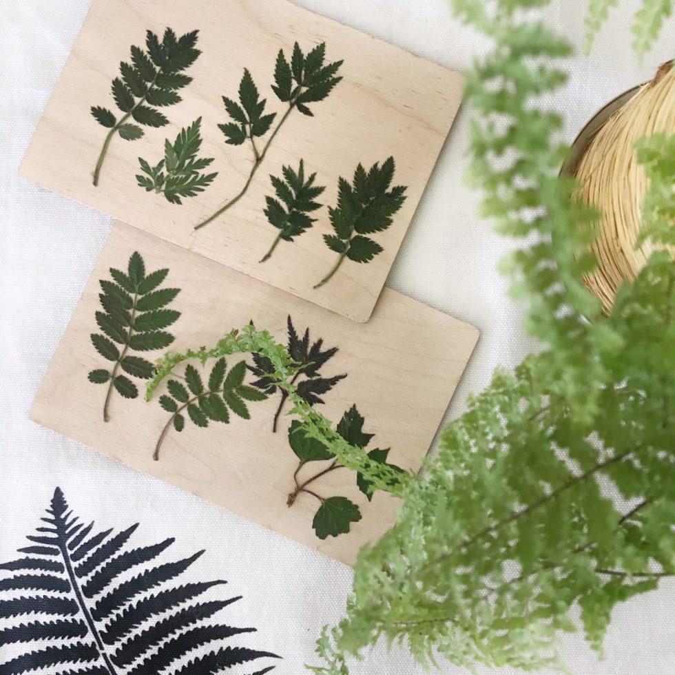 DIY: Gepresste Blätter auf Holz-Postkarte. Holzbild mit Pflanzen. Geschenkidee mit Naturmaterial. Natur-Kunst auf Holz. #chalet8 #gepressteblätter #holzdiy #holzpostkarte