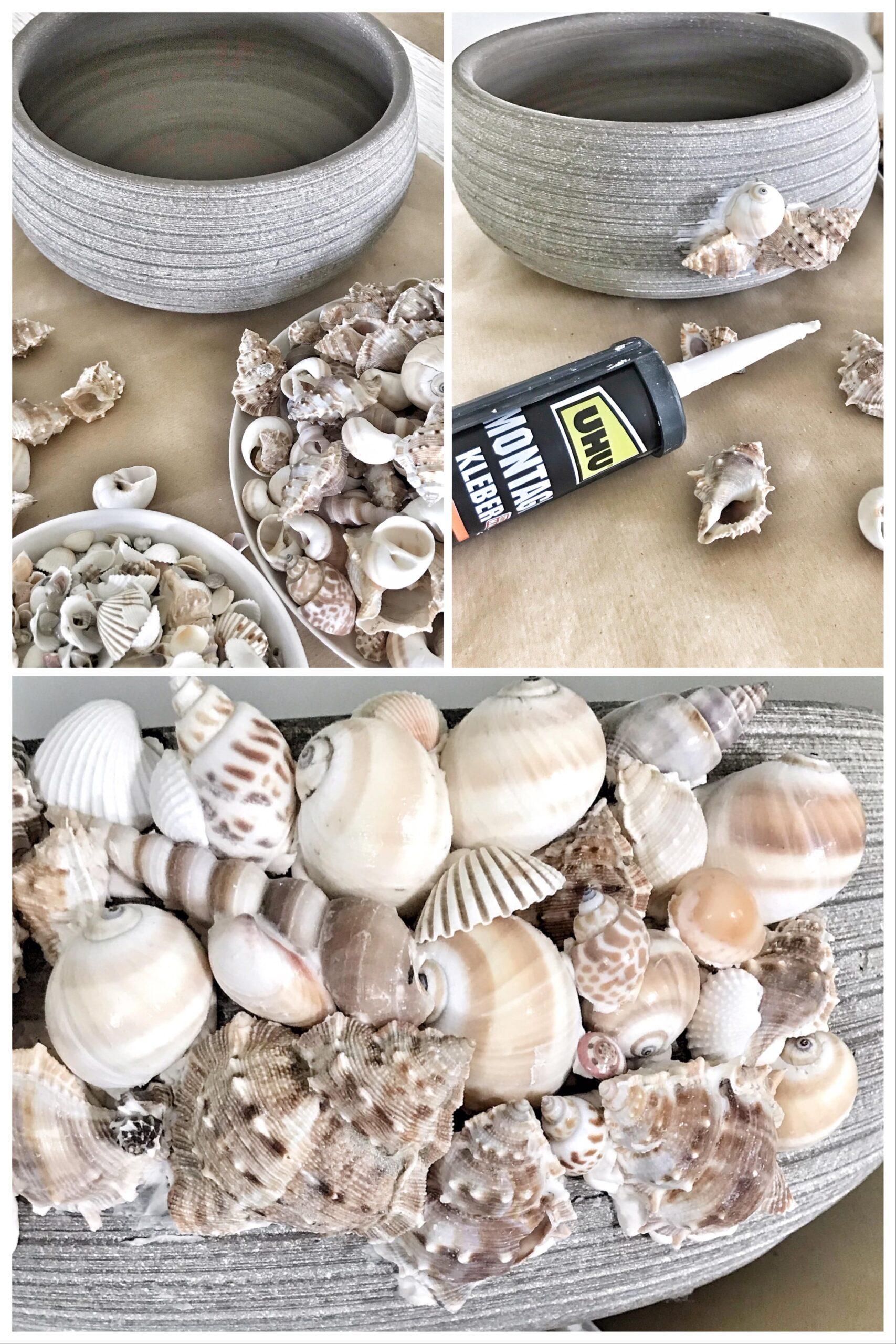 DIY: Maritime Deko: Muschel-Schale für Balkon und Garten #chalet8 #Muschel #Sommerdeko #Maritim #Blumenschale